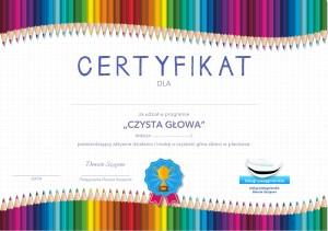 usługi pielęgniarskie certyfikat